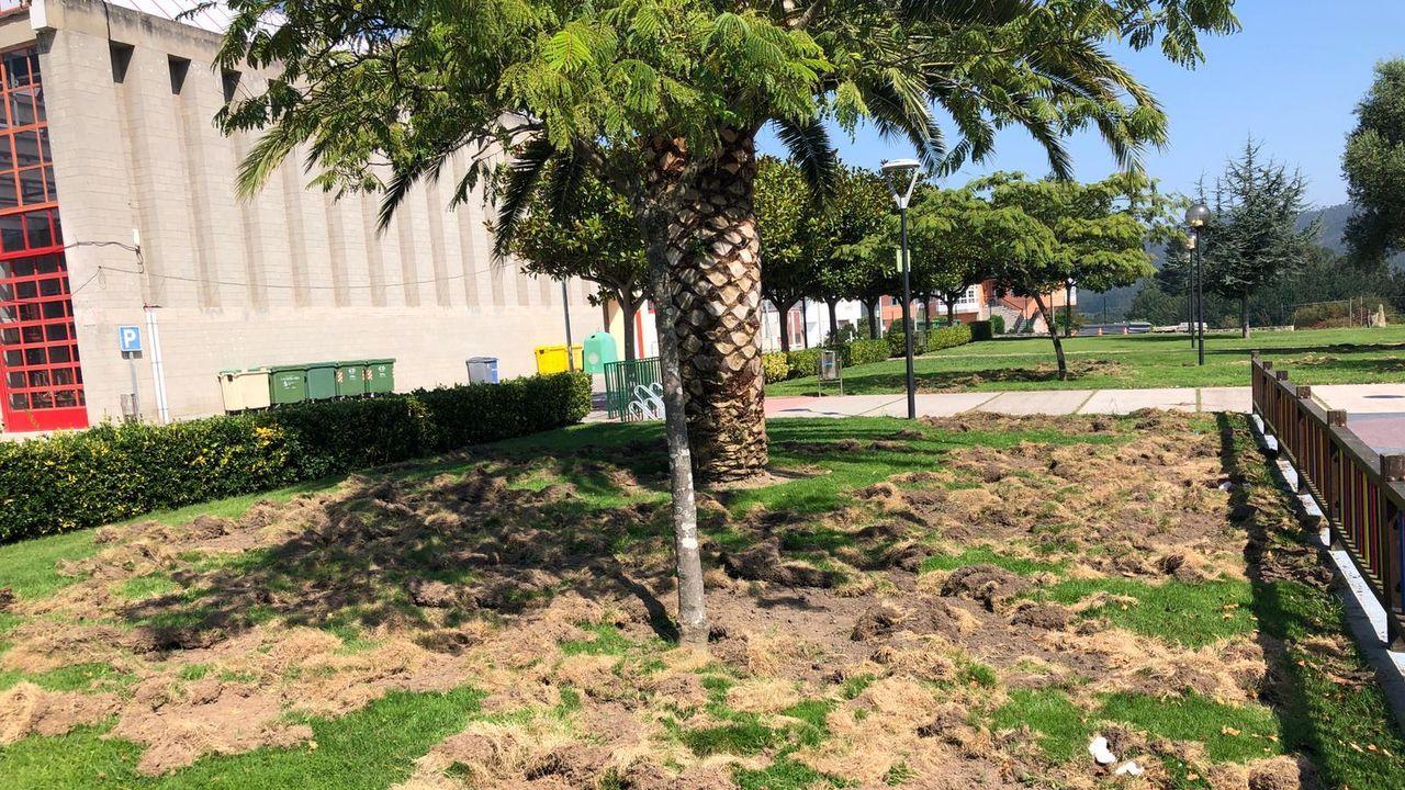 Las obras continúan en el exterior del colegio Pedro Caselles Rollán de Xove