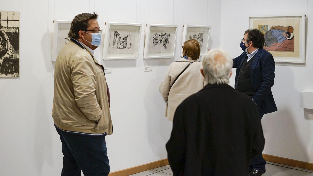 Los daños que sufre la Muralla de Lugo.Gabriel Alén presentou a mostra este luns