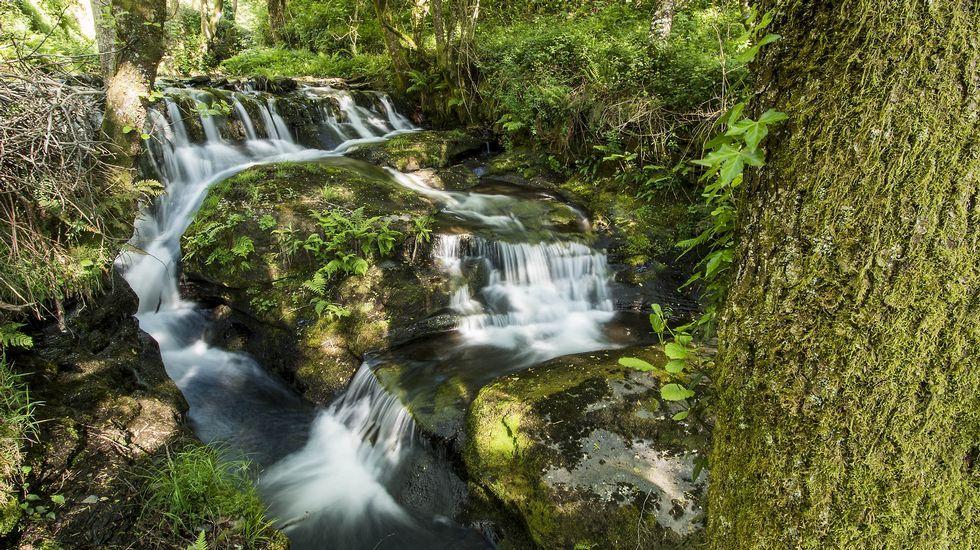 Esta vieja presa se usó en tiempos para llevar agua al antiguo balneario de A Ferrería do Incio
