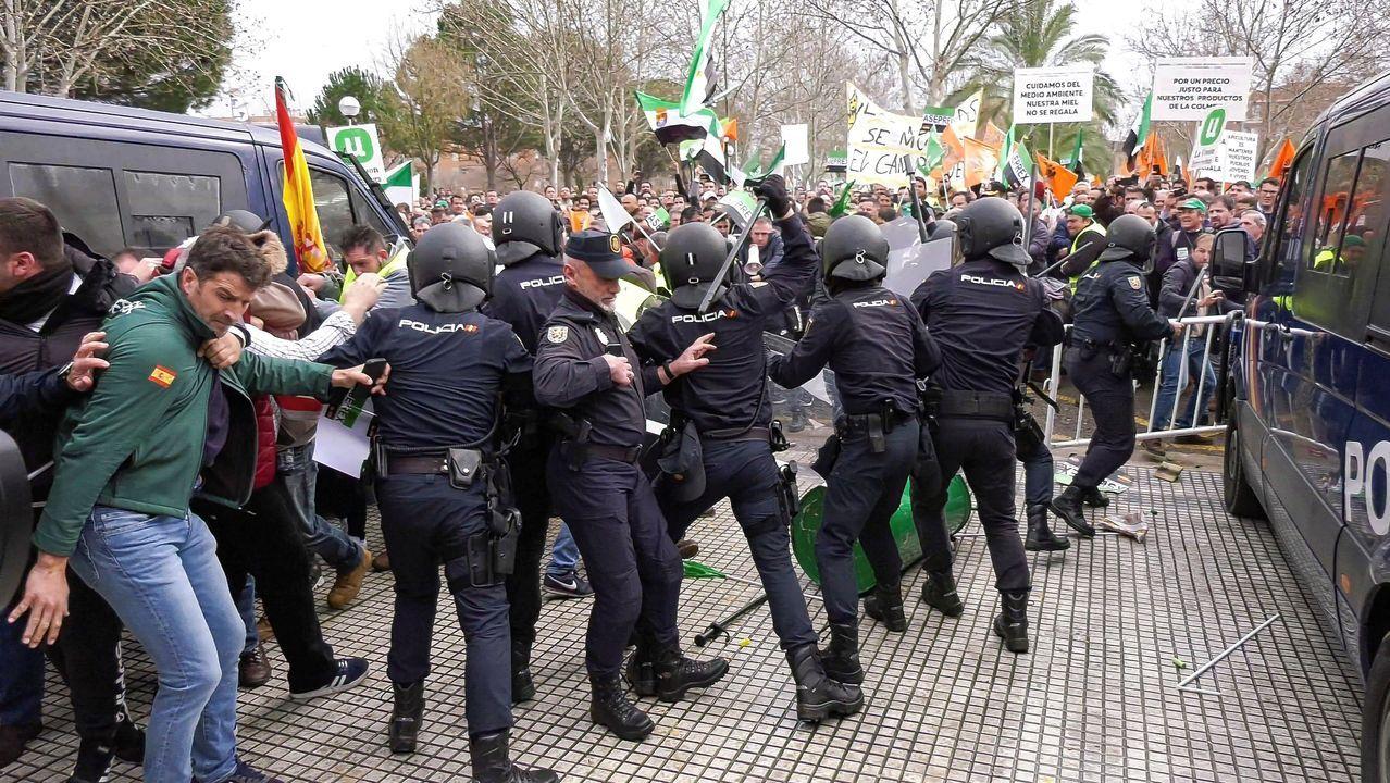 Batalla campal en Agroexpo, Extremadura.Ganaderos se manifiestan frenta a la Junta General