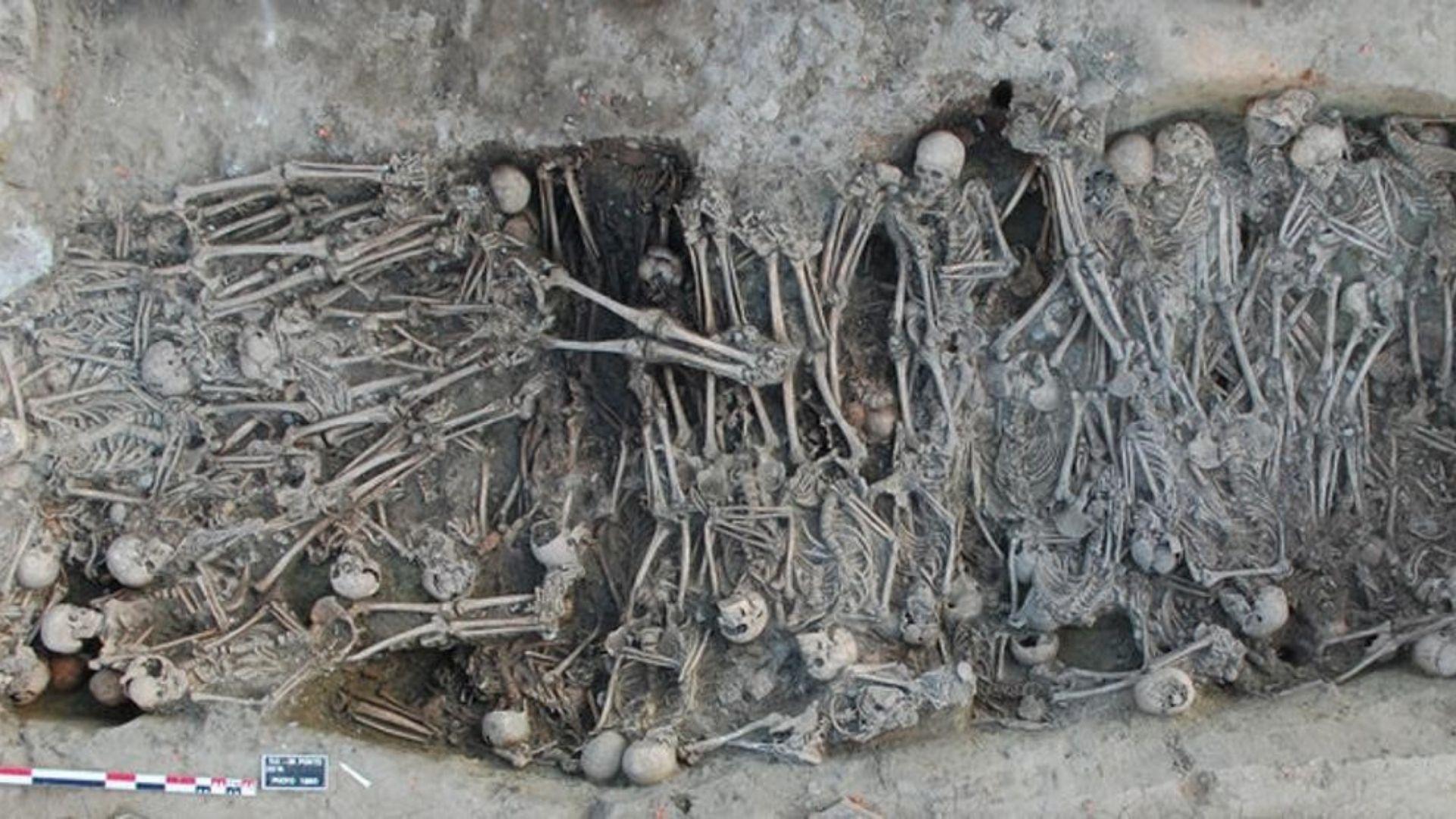 La Peste Negra. Años 1347-1352. Fue una de las epidemias más mortíferas de la Historia. Los muertos se estiman entre 20 y 50 millones de personas, llegando a afectar al 50% de muchas ciudades europeas y asiáticas. La provocaba una bacteria transmitida por las pulgas de las ratas negras. En la imagen, fosa común de la época de la peste negra encontrada en Toulouse (Max Planck Institute). ©Archeodunum SAS, Gourvennec Michäel