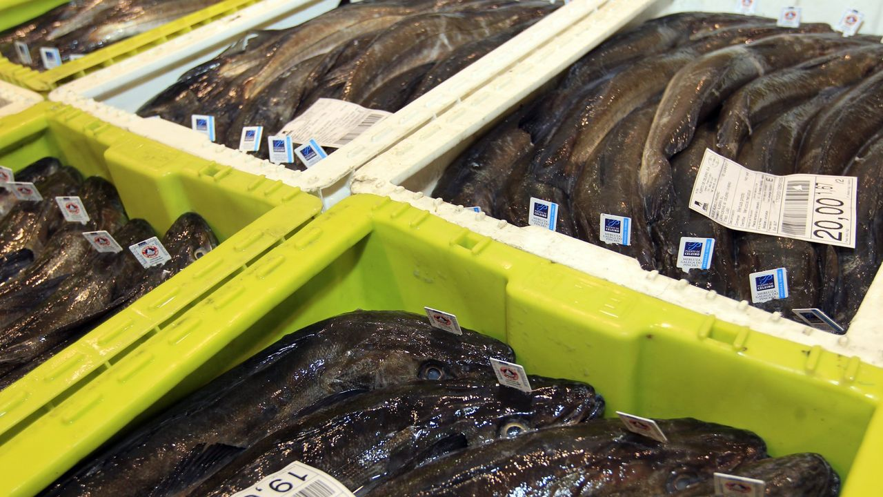 ¿Cómo pueden aprovechar todo su potencial el pan, el queso y la patata de Galicia?.Friend of the Sea, Premio Alimentos de España y Galicia Calidade acreditan a la merluza del pincho de Celeiro, que sale de lonja con una etiqueta individual