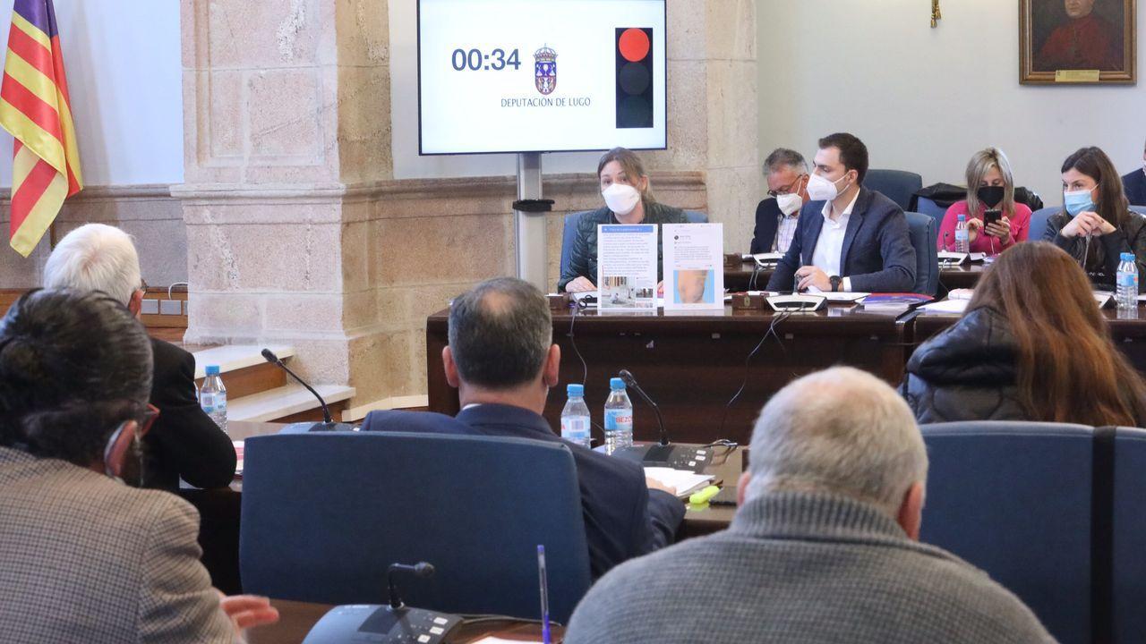 La diputada del PSOE Pilar García Porto enseña un cartel con declaraciones del alcalde popular de Antas de Ulla