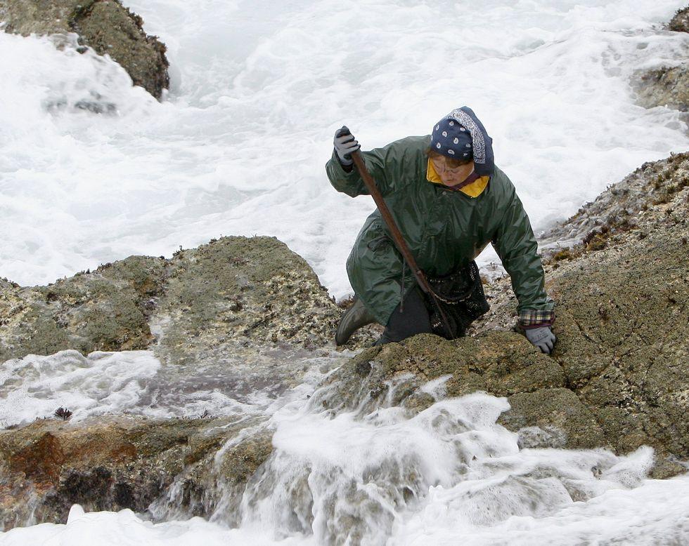 Una percebeira trabaja en la costa de Corme para extraer crustáceos de O Roncudo.