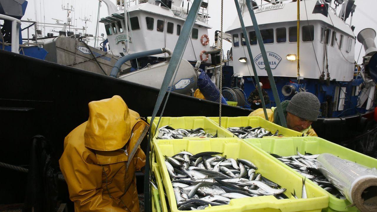 Entre otros muchos proyectos, las subvenciones financian proyectos de mejora de las condiciones de vida y trabajo en los pesqueros, como este que descarga en Burela (foto de archivo)