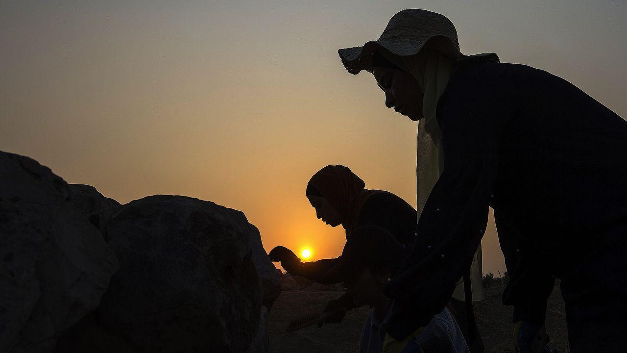 Queso cabrales.En el marco del congreso se inaugurará una exposición fotográfica sobre los trabajos arqueológicos que desarrolla la UDCen Palestina