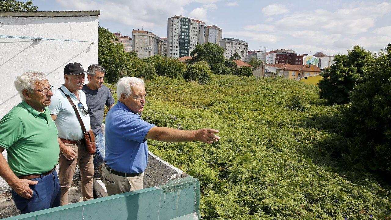 Dejadez municipal. Vecinos próximos a la zona de Castrelos y la plaza de América solicitaron al Concello, en el 2013, que desbrozara una selva de maleza que ocupa 8.000 metros y que, un lustro después, seguía igual.
