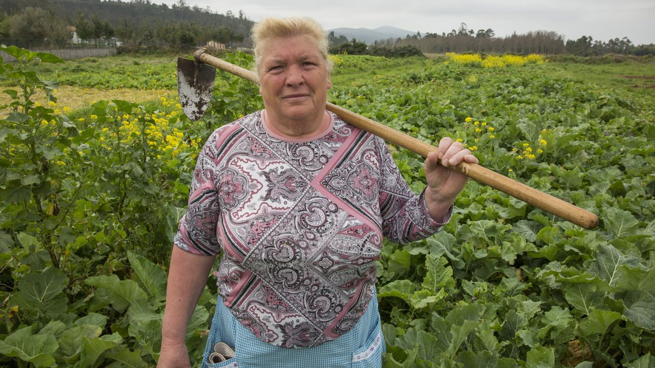 La imagen de esta gallega, Dolores Leis, dio la vuelta al mundo tras salir en La Voz por su parecido con Trump. «Eu digo que será pola cor do pelo», dice.