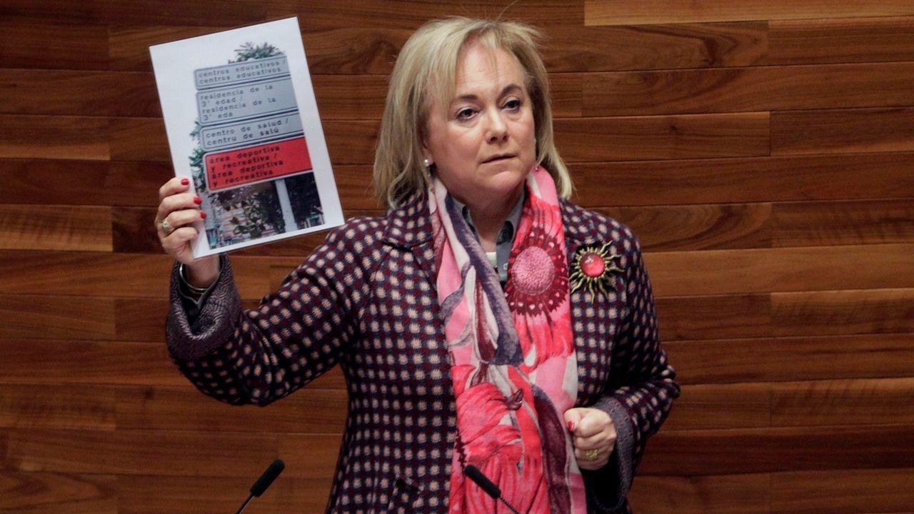 Mercedes Fernández carga con la oficialidad con una imagen de carteles bilingües