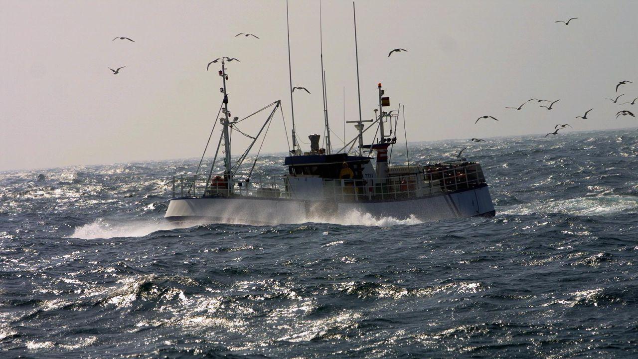 Los pescaderos realzan la contribución de Red Natura a una pesca más sostenible