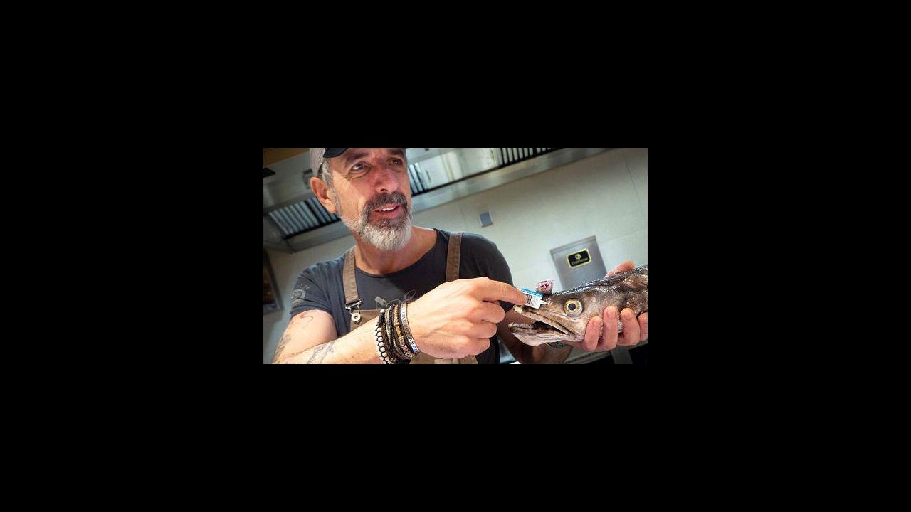 Pepe Vieira, Camiño da Serpe y Casa Solla, en el arranque.El cocinero Tomás Rubio (en la foto) y la jefa de sala de sala de A Viaxe, Bianca Barbeira, forman tándem en el negocio de la plaza de O Matadoiro, uno de los restaurantes santiagueses recomendados en la Guía Repsol 2021. En ella destacan sus ceviches y tiraditos. «Hacemos base de cocina peruana, producto gallego y matices del mundo», dicen desde el local hostelero