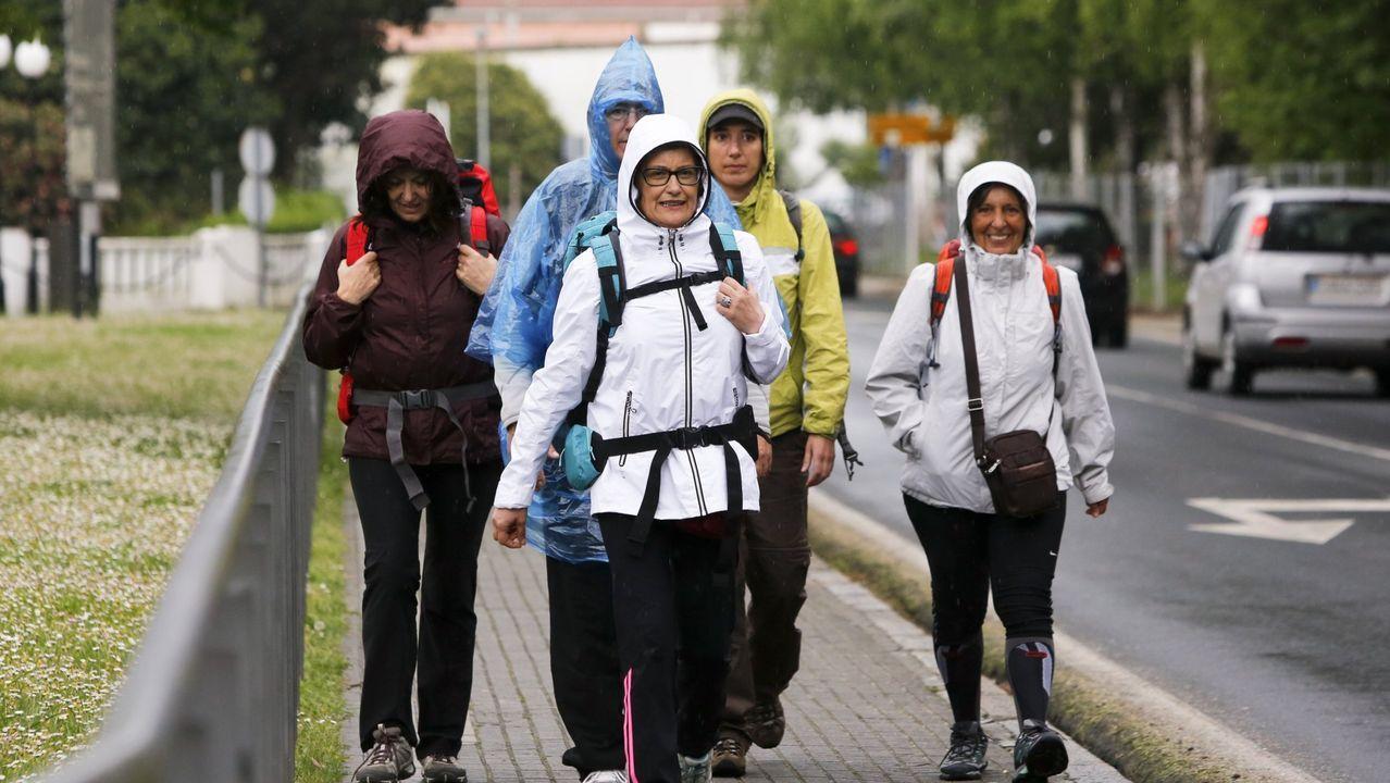 Escolares colaborando en traballos de mantemento ao pé do Camiño de Santiago