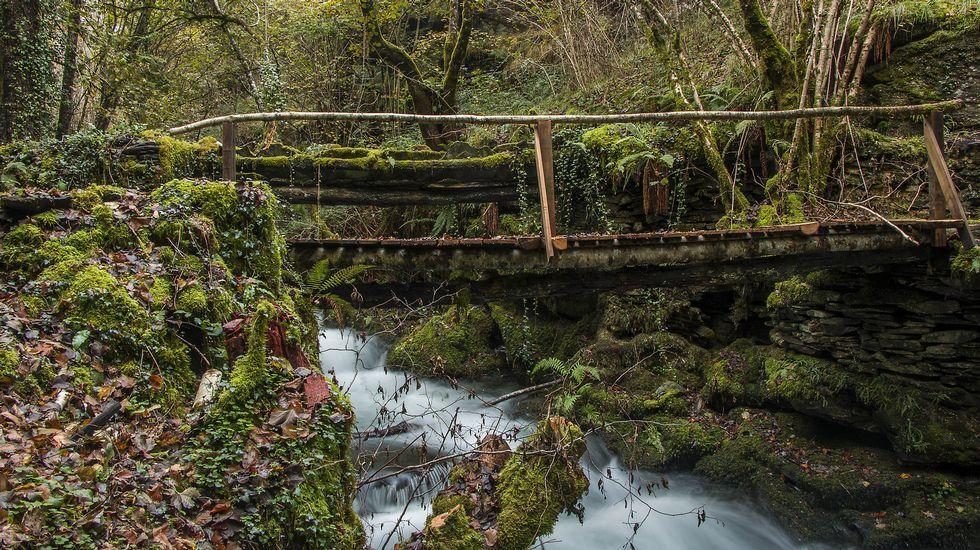 Junto al viejo puente de As Reboleiras se construyó el año pasado una nueva pasarela