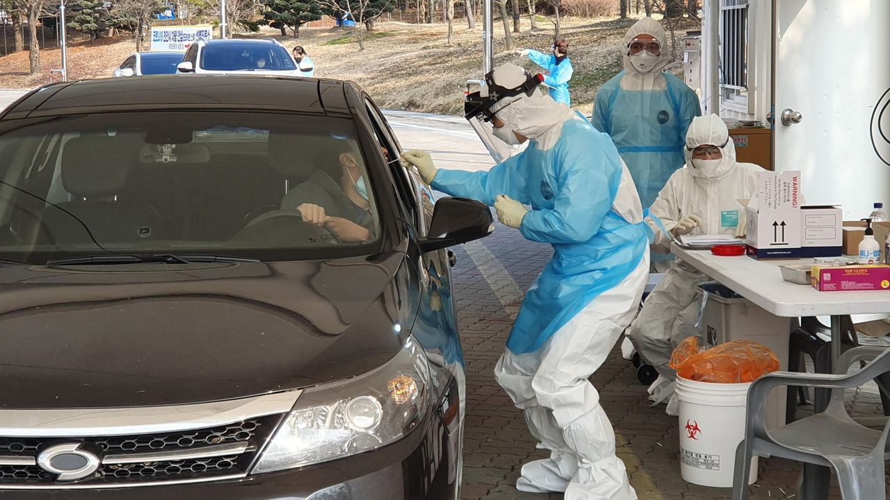 murciélagos.Test de coronavirus realizados a los conductores
