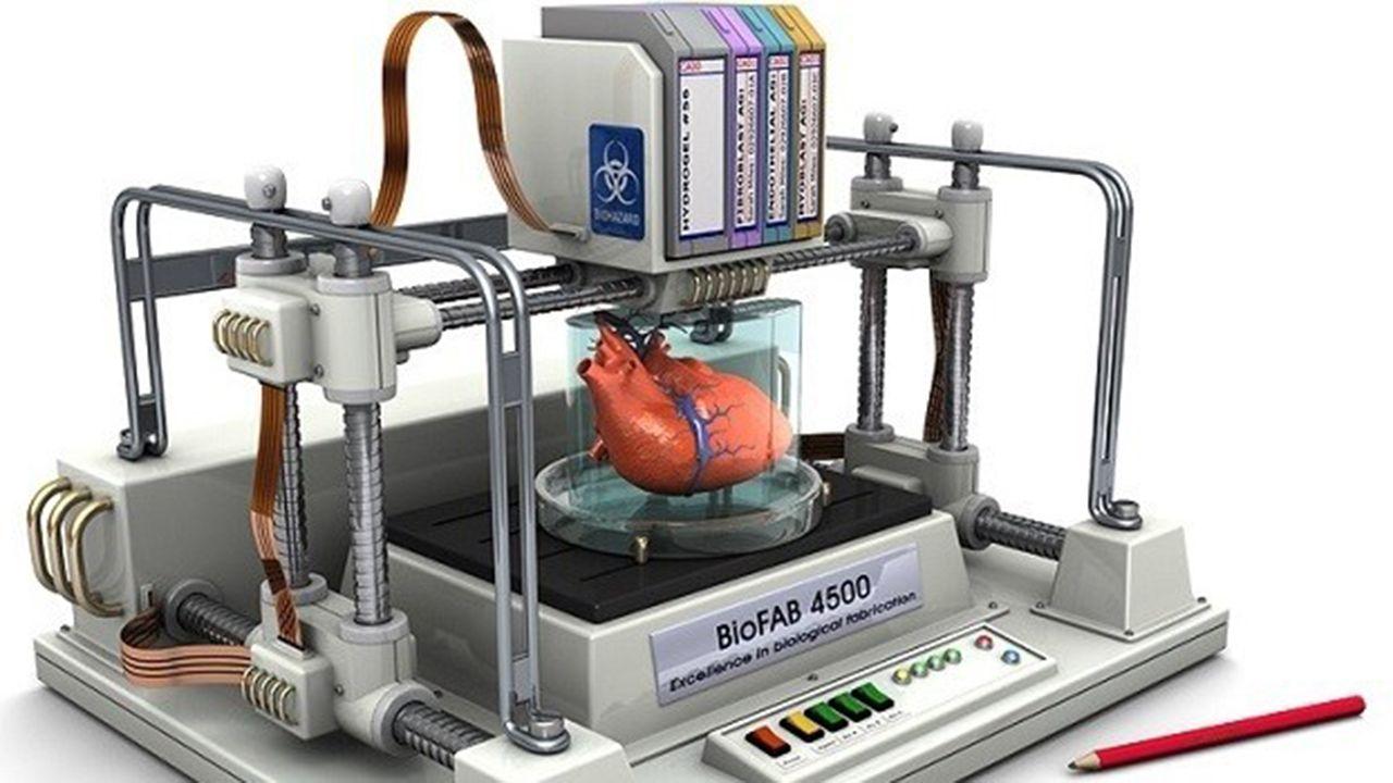 Una bioimpresora 3D