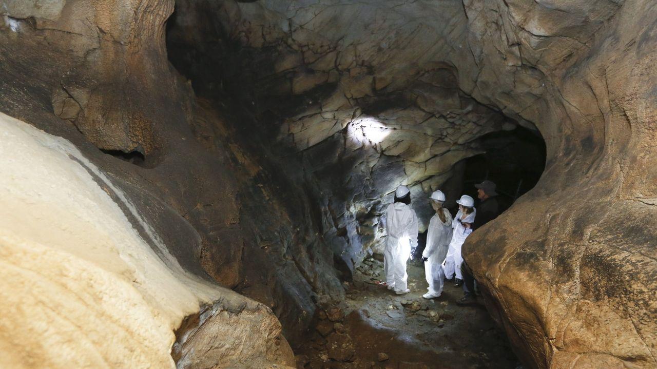 Las pinturas y grabados se encuentran en una sala interior de la cueva a la que no llega la natural y a la que solo se puede acceder por un estrecho pasaje