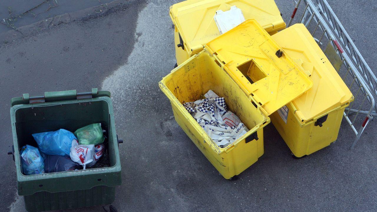 Muerte del marisco en los viveros de Carril.Cribado realizado esta semana en el campus universitario de Pontevedra