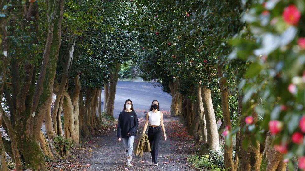 Los colores de la primavera invitan a pasear por Pontevedra y O Salnés