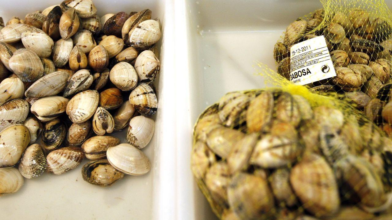 Identificados tres furtivos cuando extraían almejas en Vigo