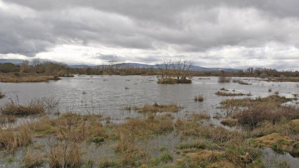 Efecto óptico producto de las lluvias en el que reaparece la Lagoa de Antela.