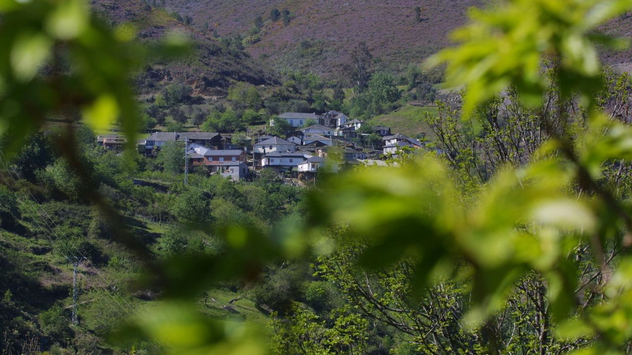 Vista de la aldea de Figueiredo, donde crecen olivos de variedades autóctonas