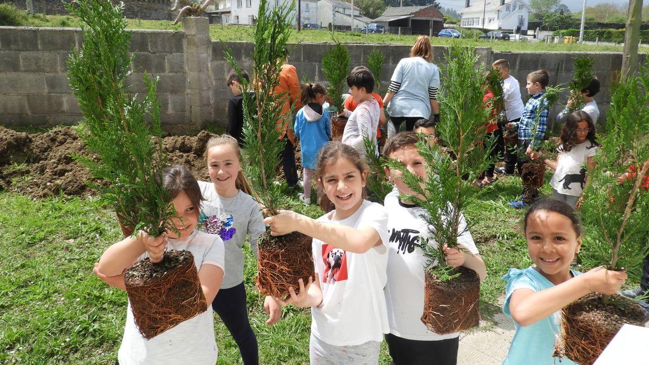 Foto de archivo del colegio de San Miguel de Reinante, en Barreiros, en una actividad de Voz Natura