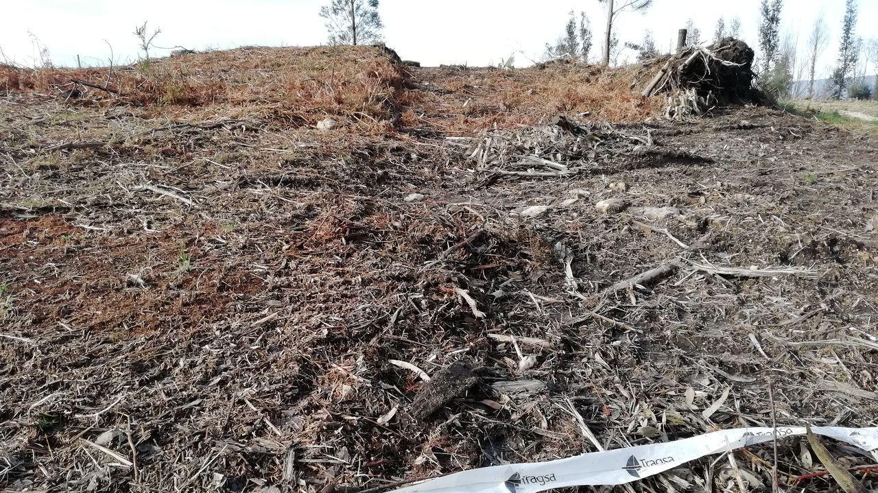 El paso de maquinaria destrozó uno de los túmulos de Os Campiños, una necrópolis que a lo largo de su historia ha sufrido el saqueo de sus losas y daños provocados por los incendios forestales