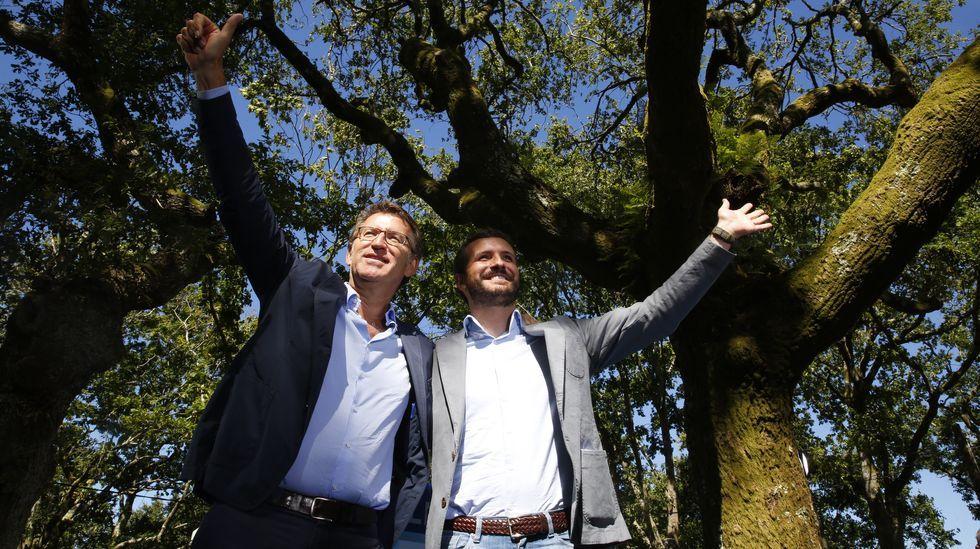 Pablo Casado acompaña a Núñez Feijoo en la apertura del curso político.Pablo Casado, en Cerdedo
