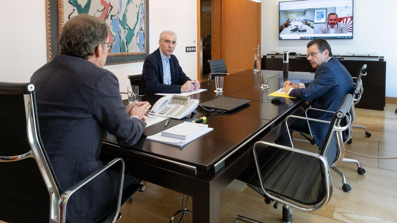 El conselleiro, en una videoconferencia de final de mayo con el comité de Alcoa, en la que también participó en presidente de la Xunta