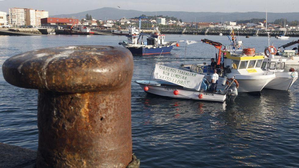 Lan orma amenaza a 45 pesquerías de 9 países que emplean 3.640 buques, la mayoría artesanales.