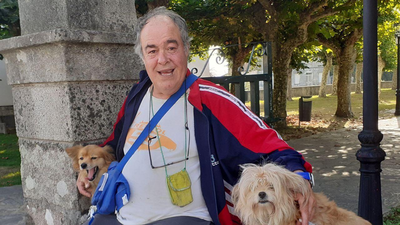 El veterinario de la potra de Teverga da explicaciones.Pablo Iglesias, en un acto de precampaña en Madrid