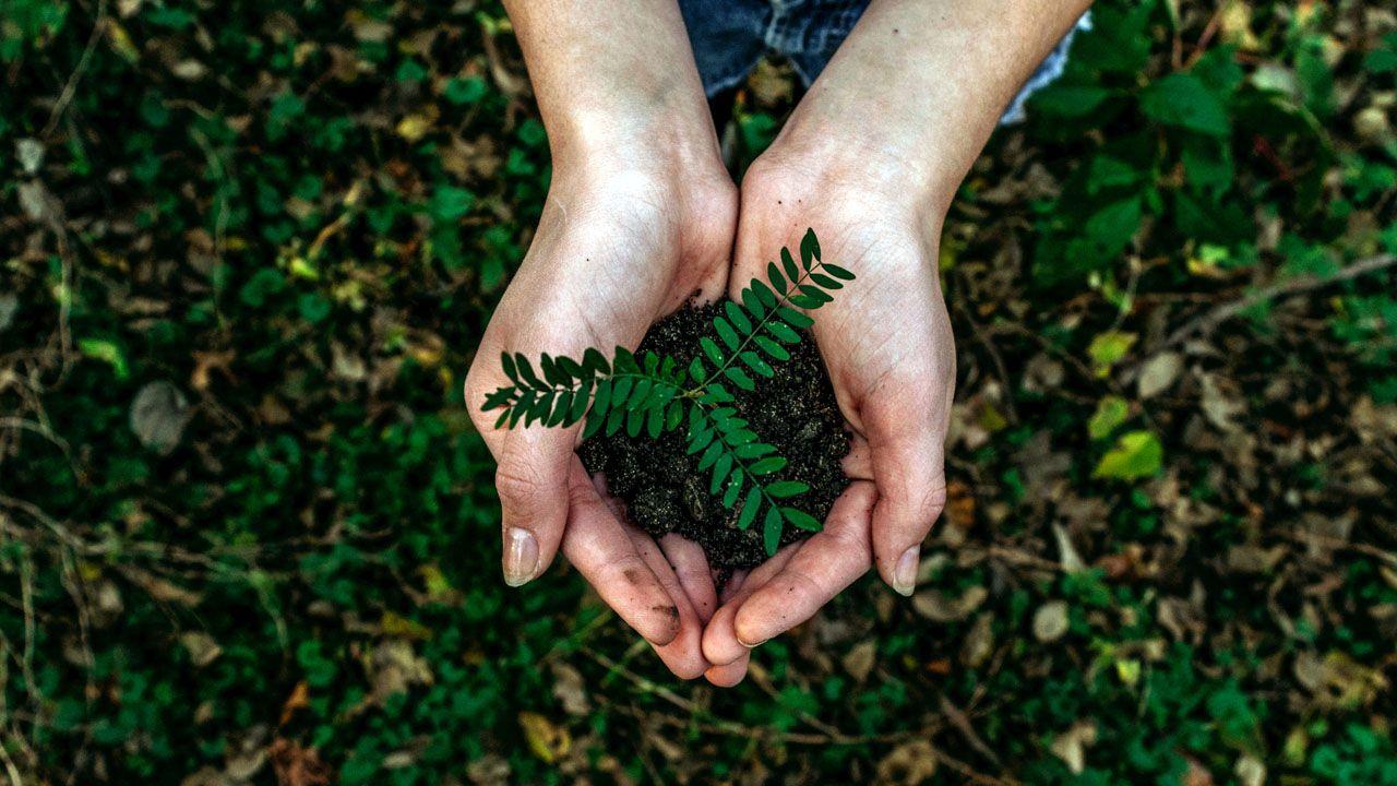 economía circular, planta, naturaleza, reciclaje, recursos, tierra.Un atenista comprueba la recepción de la TDT en un edificio de viviendas
