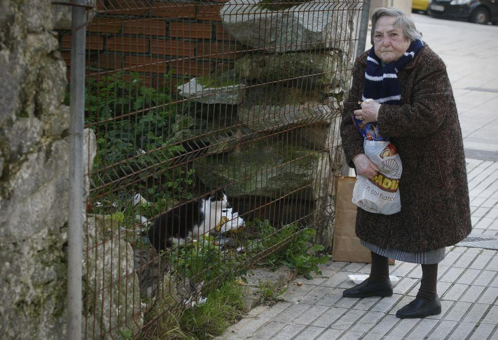 María del Carmen alimenta a los gatos de la calle con piensos, jamón y latas especiales.