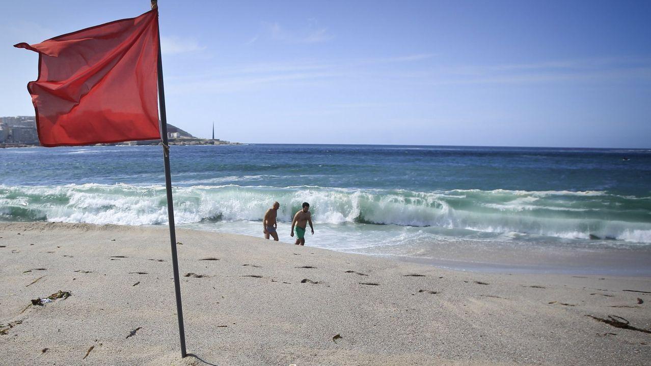 El zorro de la playa de Altar, capturado en una jaula.Acceso a la playa de Area da Secada, en Arousa