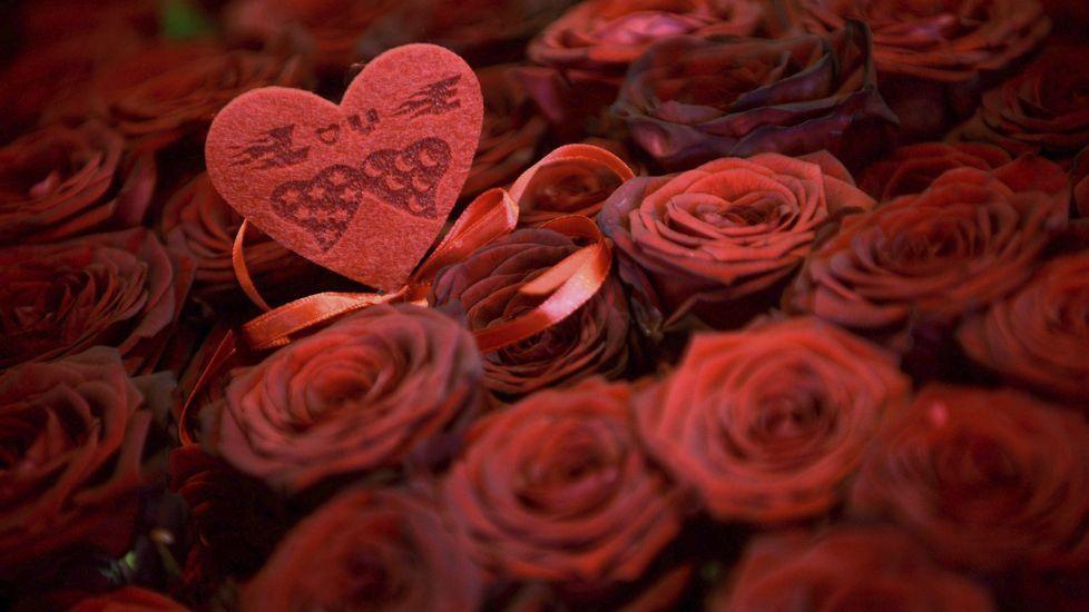 El mundo se tiñe de rojo para celebrar San Valentín.Antonino Nieto, en el centro, coordina a los autores que han participado en el libro.