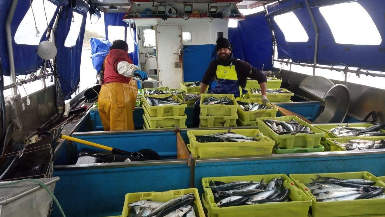 El ministro Planashabla delas ayudas a la pesca, el marisqueo y la acuicultura.La campaña de la xarda ha sido un salvavidas para muchos pesqueros en esta crisis
