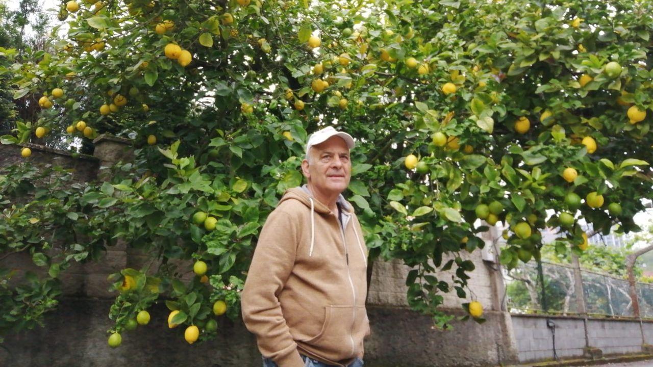 Los mayores de 70 años disfrutan del aire libre y los parques.José Ramón Cernadas Prego