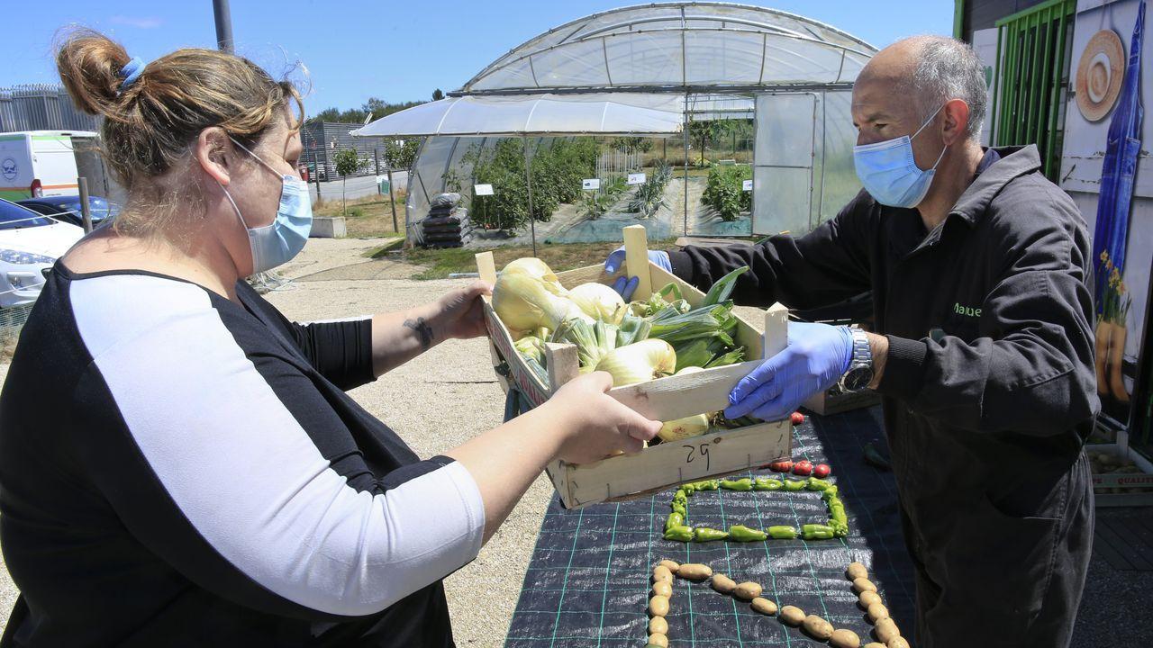 Manuel Pérez, al frente del huerto, entrega las hortalizas una vez a la semana al Banco de Alimentos