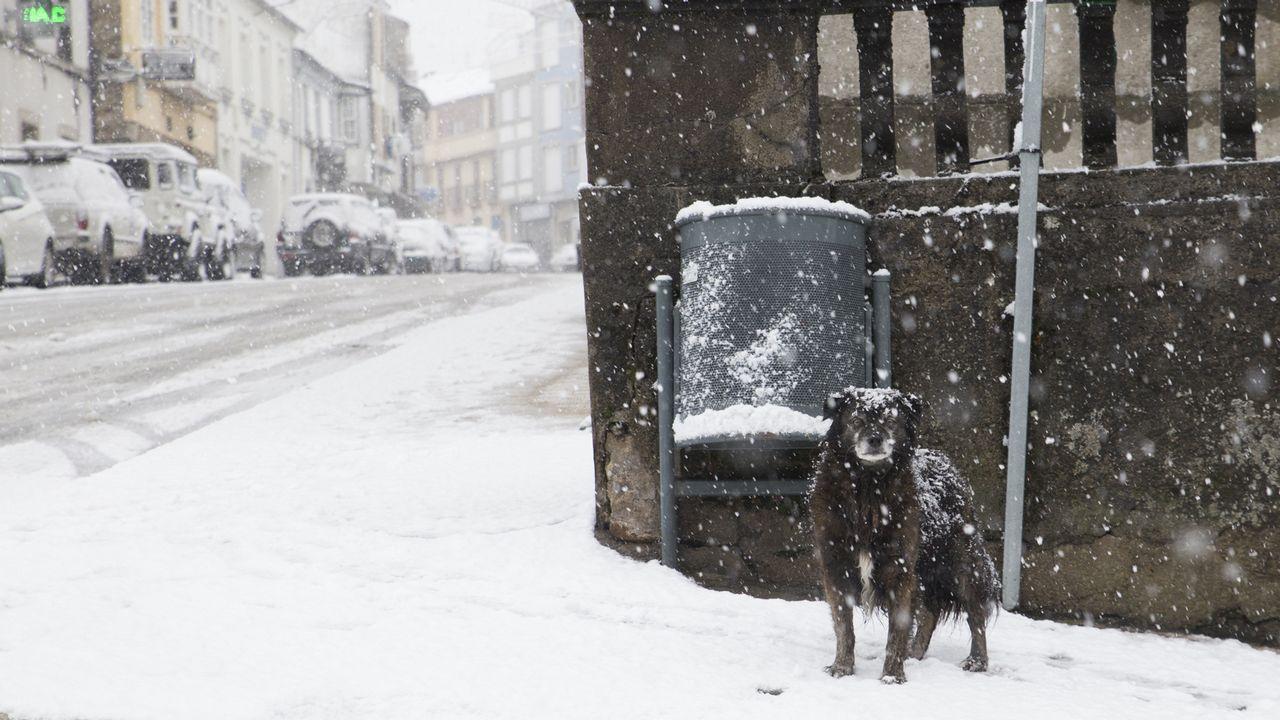 Así amanece Galicia tras el paso del temporal Ana. Las lluvias han dado paso a la nieve en distintas zonas de las provincias de Ourense y Lugo, como en O Cebreiro