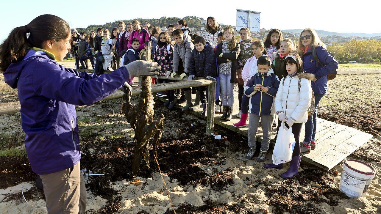 Alumnos de Reboreda se conciencian sobre los residuos.Vista de una estrella de mar extraída durante la campaña científica en los montes submarinos del Canal de Mallorca