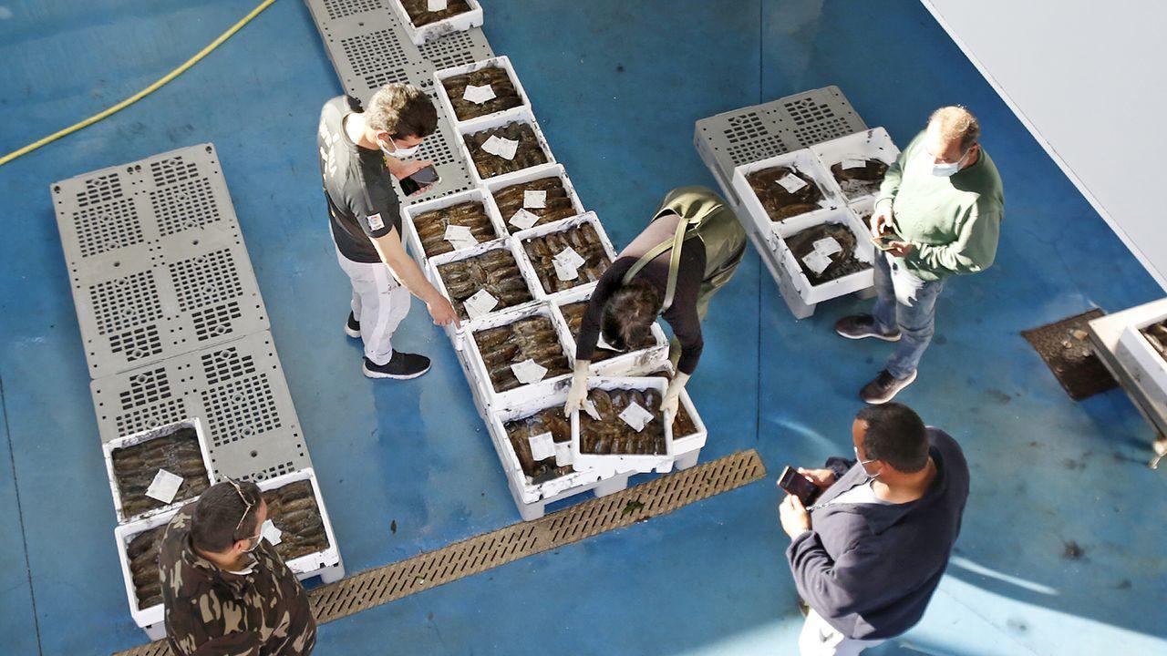 Imagen del archivo de una pescaderia del Mercado de La Paz de Madrid, donde, según Iván Vaqueiro, entre el 10 y el 25 % de sus ventas las hacen a través de una plataforma de Amazon