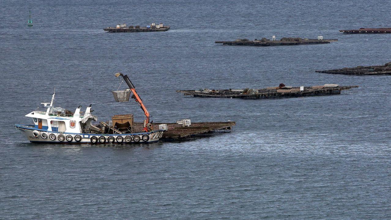 Llegada de los detenidos en la operación del narcosubmarino a los juzgados de Cangas