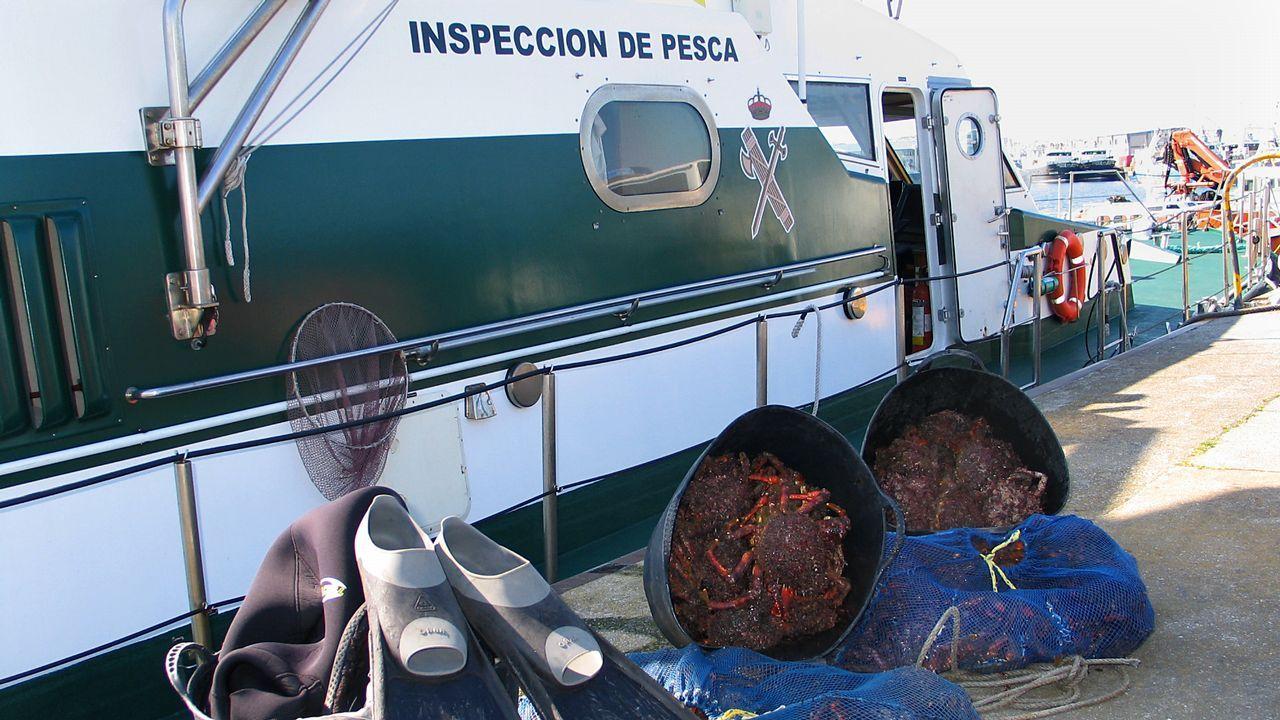 Una noche vigilando a los furtivos.El servicio de Guardacostas renueva seis vehículos para la lucha contra el furtivismo.