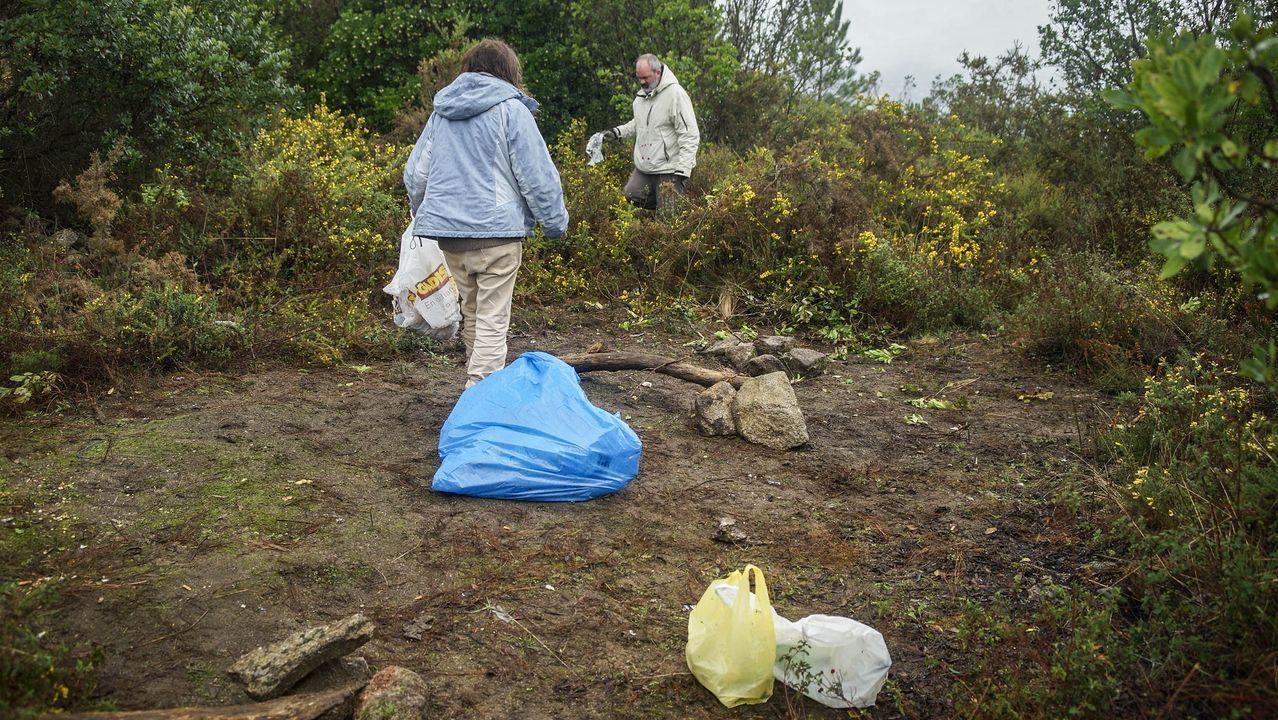 MAGOSTOS 2019.Magostos en Montealegre: un grupo de cinco ourensanos recorría este domingo la zona para recoger desperdicios