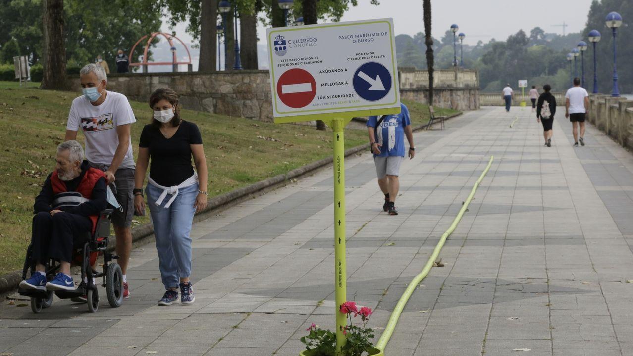 Graban a una pareja de jabalíes saliendo de un comercio y paseando por la calle.Imagen de archivo de las indicaciones puestas en el paseo de O Burgo