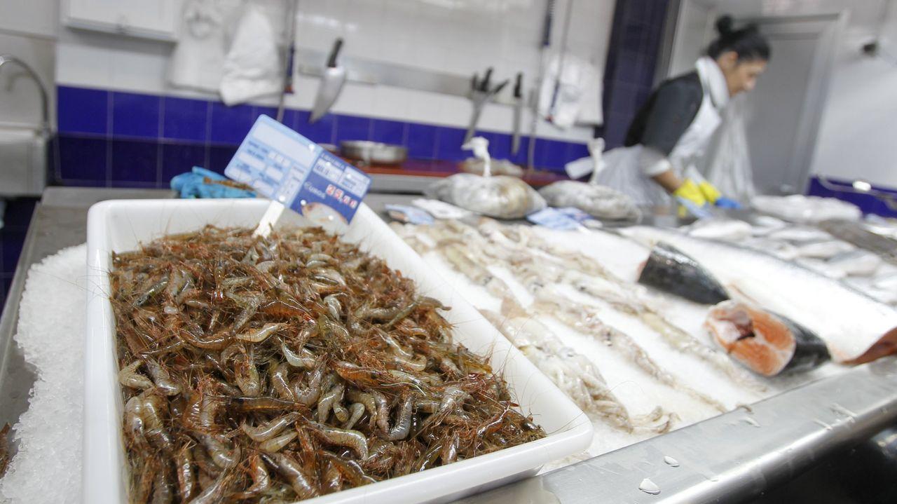La Pescadería de Fredy.En la imagen, el comedor del colegio Ponzos de Ferrol, donde estos días la cifra de usuarios no llega a los quince niños