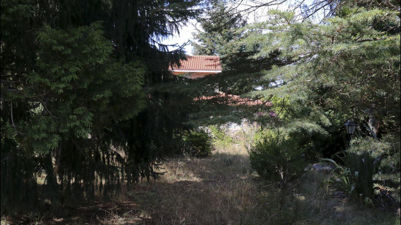 El lugar donde apareció el cuerpo de Asunta