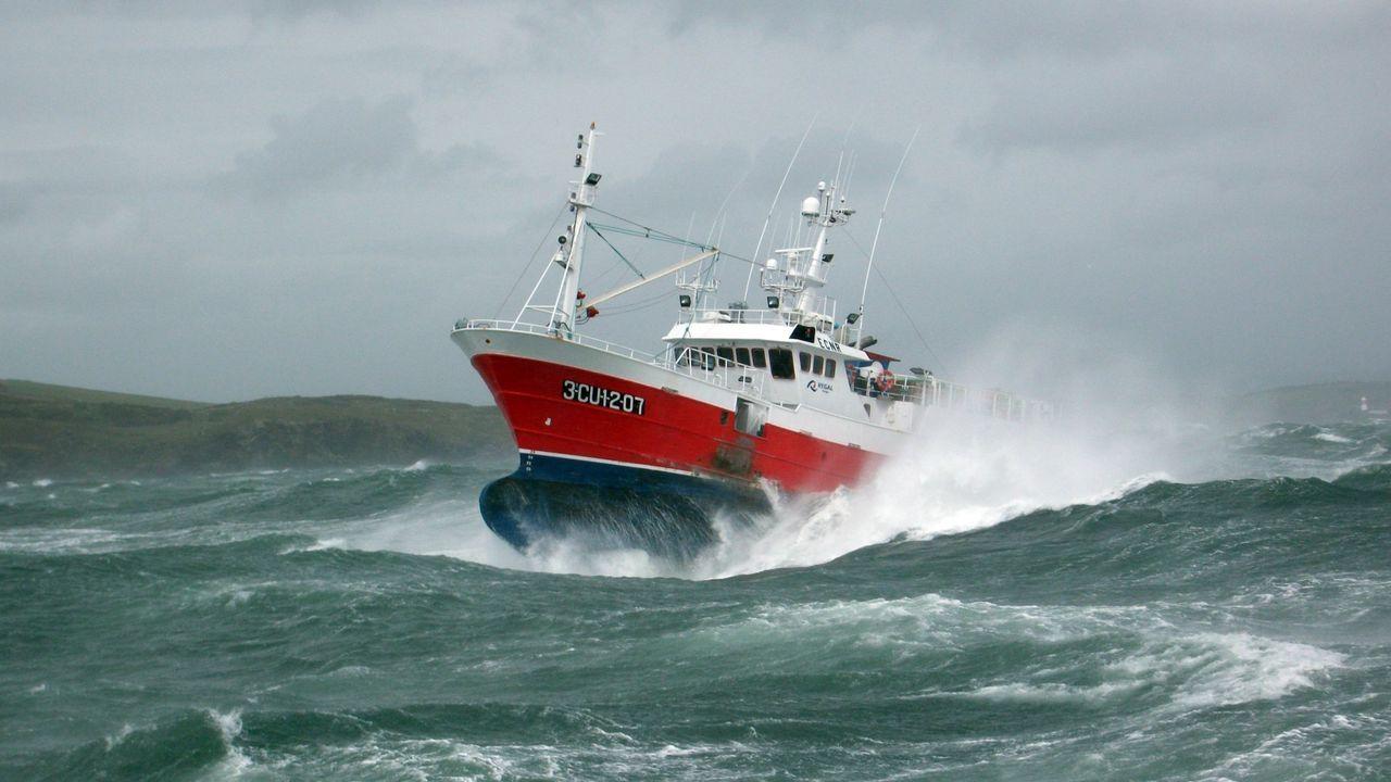 El Anchousa, uno de los cientos de pesqueros de Celeiro que pueden verse en la web de la cofradía