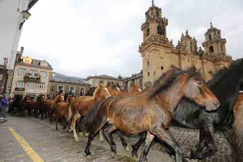 La reunión se celebró ayer en Burela.