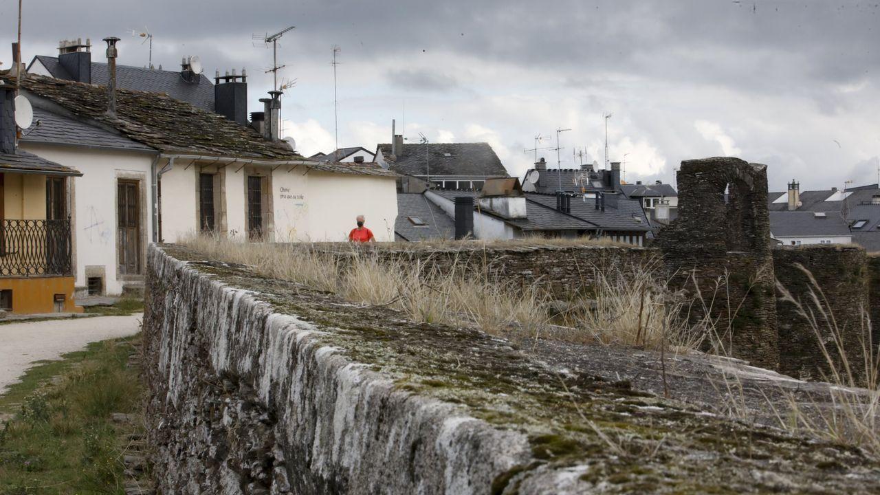 20 fotos para 20 años de la Muralla de Lugo Patrimonio de la Humanidad.La Xunta prevé realizar trabajos de limpieza y de consolidación en la Muralla en el 2021